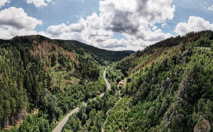 Landschaft im Harz